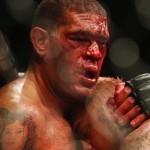 Антонио «Бигфут» Сильва против Соа Палелея на UFC 190