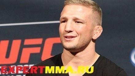 TJ-Dillashaw-QA-UFC181-04-440x250