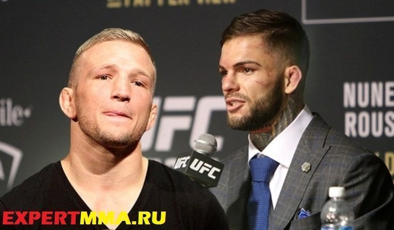 TJ-Dillashaw-and-Cody-Garbrandt