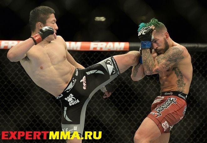 MMA: UFC 182-Horiguchi vs Gaudinot