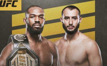 Результаты турнира UFC 247