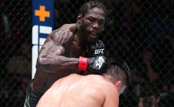 Каннонье — Гастелум: результат боя на UFC on ESPN 29